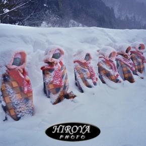 喜多方教育長賞「風雪に立つ六地蔵」