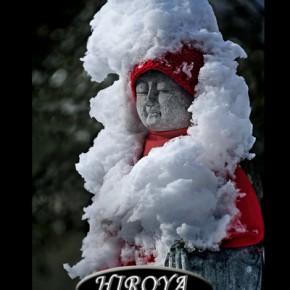 日本カメラ賞「雪融けて」