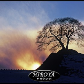 ニコン賞「炎立つ夕陽と」