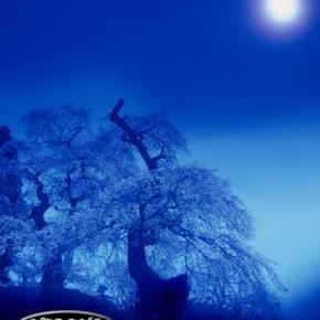 依嘱の部 福島県写真連盟特別賞「月輪春景」
