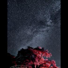 「銀河の里」福島県写真連盟特別賞