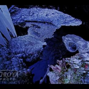 「神秘のブルーアイス」テレビユー福島賞