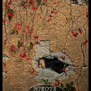 「土塀を飾る」委嘱 特別賞